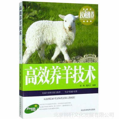 正版 高效养羊技术 农业养殖图书批发 图文本 常见病预防防治书籍