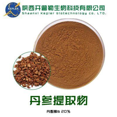 SC生产工厂源头 丹参提取物 酚酸B 5% 保健品食品原料 大量批发