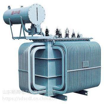 10KV级 S9/S11系列全密封油浸式变压器山东顺昌变压器