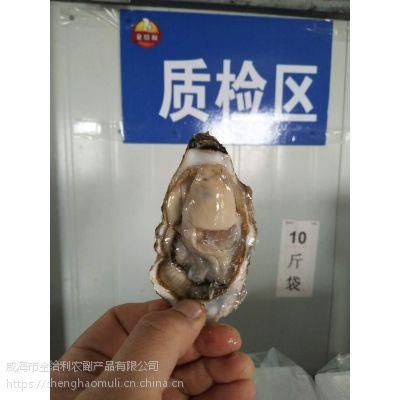 广州哪里有生蚝批发 乳山生蚝在哪吃