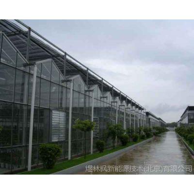 玻璃温室大棚|玻璃温室大棚生产厂