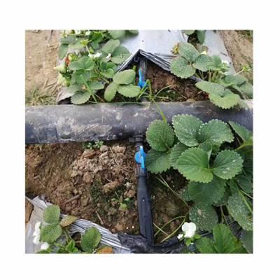 耐用草莓专用滴灌带多少钱一捆