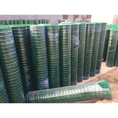 塑包铁丝网 工业铁丝网 电焊网荷兰网