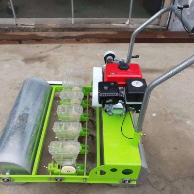 蔬菜籽播种机 大白菜精播机 农用菜籽精播机