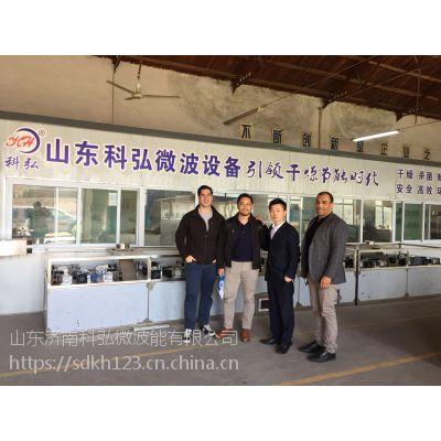 济南微波硅酸铝纤维板烘干机
