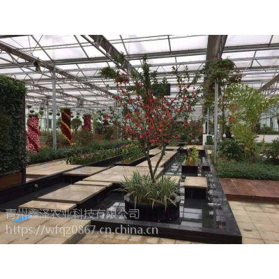 阳光板生态园餐厅/餐厅温室里面可以种无土栽培蔬菜吗/山东潍坊温室建设