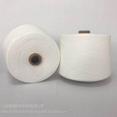 纯大化涤纶纱线21s本白色环锭纺现货
