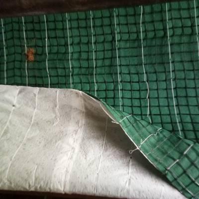 植草毯公路边坡绿化 水土流失治理生态毯 山坡绿化防护椰丝毯