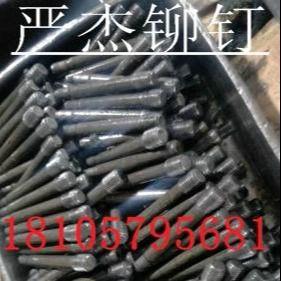 严杰铆钉订做供应电动工具电钻电镐冲击钻前扶手配件销钉 电锤配件销钉