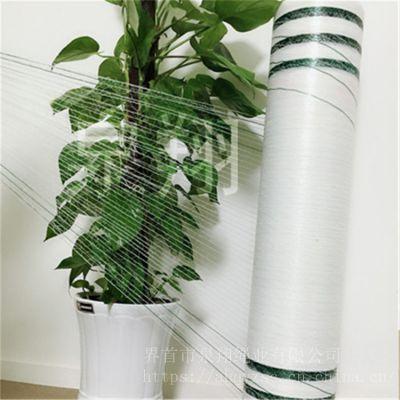 捆草网伊诺罗斯TUAREG系列圆捆打捆机打包专用打捆网塑料PE网生产