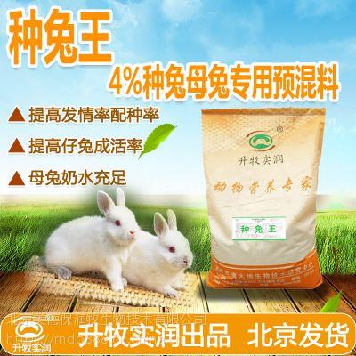 种兔预混料母兔预混料提高繁殖力种兔预混料厂家