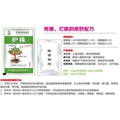预防大姜茎基腐(烂脖子)用得海龙护株组合40g+20g微量元素叶面肥料粉剂