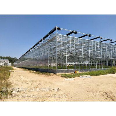 江西吉安生态无土栽培玻璃温室大棚风机水帘自动开启、10000平方面积项目建造公司