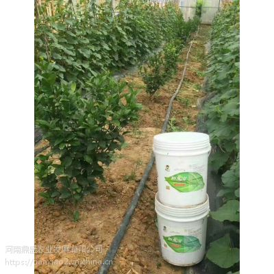 秋播喜磷作物多那么施磷肥都有什么作用呢?