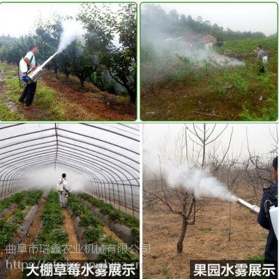 双管水冷果园烟雾机 农用园林除虫弥雾机 高效植保弥雾型打药机
