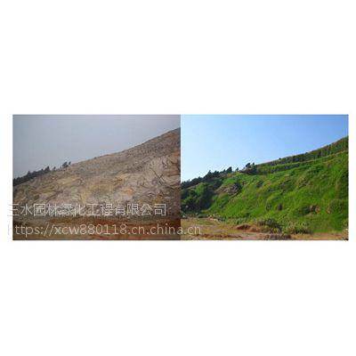 贵阳矿区植草复绿大面积撒播种子