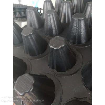 排水板 蓄排水板 车库滤水板 建筑夹层板使用范围广 质量有保障