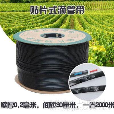 湛江几种常用香蕉园节水灌溉方法农业生产
