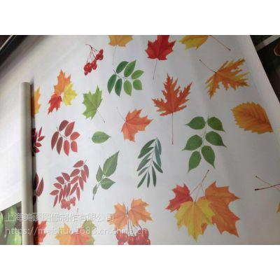 上海美硕图像专业油画布打印 油画布喷绘