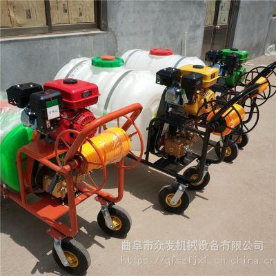 多功能多头喷雾机 菜园必备农用喷雾器 果园杀虫打药机