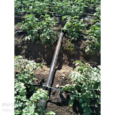 山药、土豆、红薯膜下滴灌材料生产厂家欢迎咨询