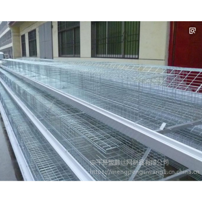 实体化厂家批发热卖蛋鸡笼带配件 三层四门镀锌 现货鸡笼子