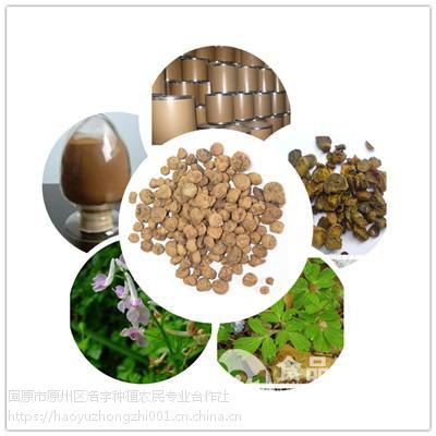 固原浩宇种植供应 猫爪草提取物 20:1 速溶粉 包邮 多糖 纯粉