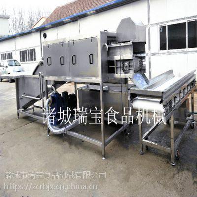 瑞宝XJ-6000型洗姜机 连续式洗姜机