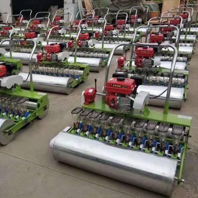 温室大棚菠菜香菜播种机 单粒下种免间苗小粒种子精播机 现代化蔬菜种植机