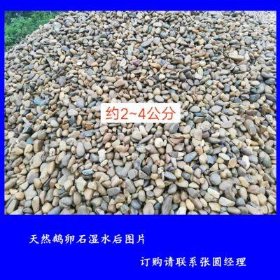 天然鹅卵石批发 变电站用的鹅卵石 黄色灰色黑色河卵石铺按摩路