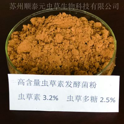 高含量虫草素发酵菌粉 虫草素3% 生产厂家