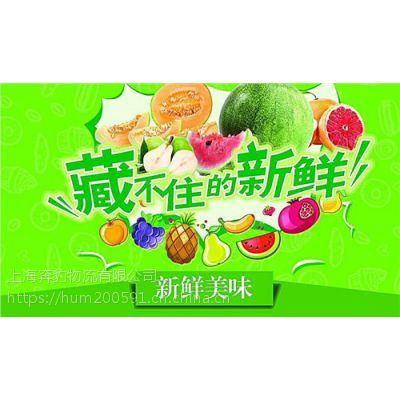 有上海到兰州冷藏物流 食品低温配送