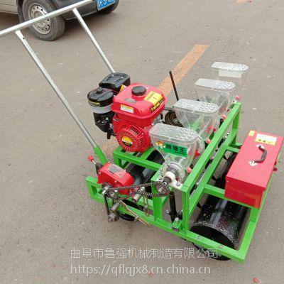人力5行生菜播种机 自走式汽油电动精密蔬菜播种机 种植机鲁强机械