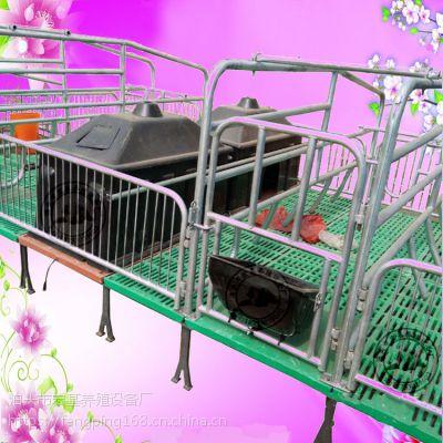出售两个母猪位双体母猪产床加重下猪床