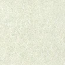 抛光砖的种类以及特点: