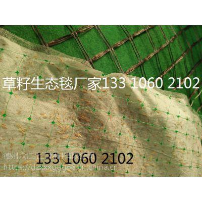 生态毯矿山绿化防护 植草毯水土流失治理 植物纤维毯 赣州椰丝毯 南昌植草毯