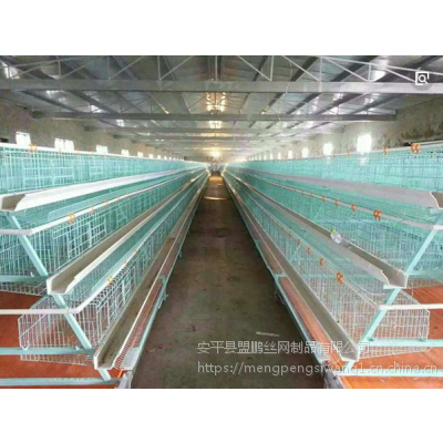 供应自动化肉鸡笼 养鸡笼子安装价格 笼养鸡舍全套设备
