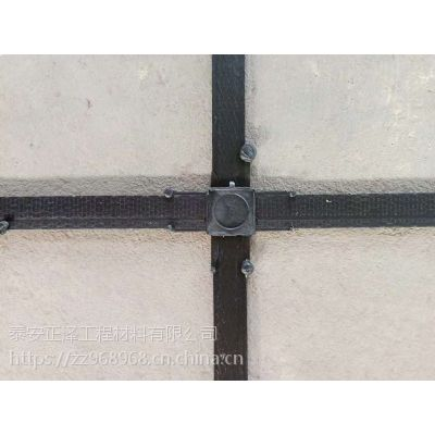 徐州市钢塑格栅抗拉能力强 多种剥离力可定做 山东厂家低价格