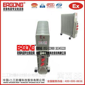 厂家直供 BDR系列防爆电热油汀电热暖气专业生产