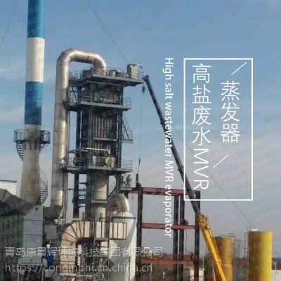 山西 高盐废水MVR蒸发器