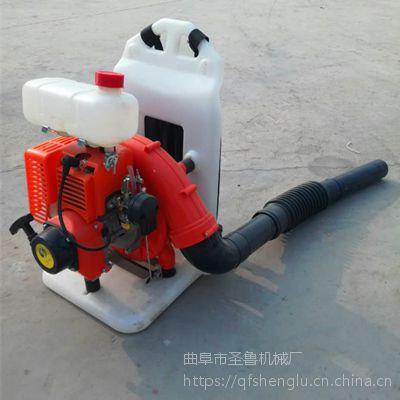 环保专用吹风机 江苏马路清理机 圣鲁牌