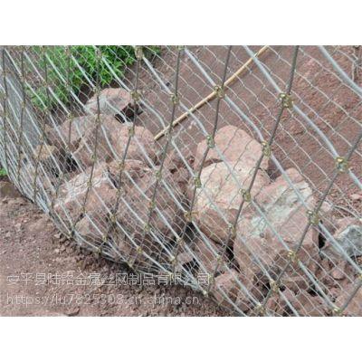 陆铭边坡生态防护网 边坡生态防护网 厂家价格