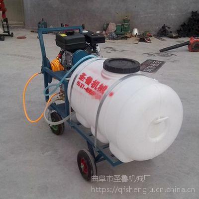 多功能农田打药机 汽油高压喷雾器 圣鲁机械