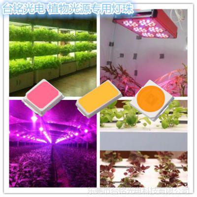 LED植物生长灯有用吗?求推荐?