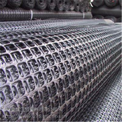 钢塑土工格栅 厂家直销 规格齐全