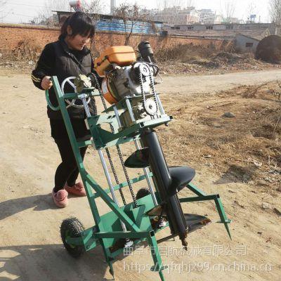 单人植树挖坑机 手提便携式植树挖坑机 启航四轮带钻眼机价格