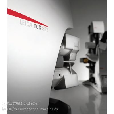 Leica TCS SP8 共聚焦平台