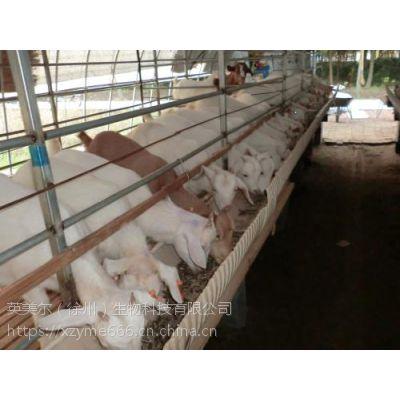 适用于大型养殖场自配羊饲料;配置育肥羊的食料的核心料