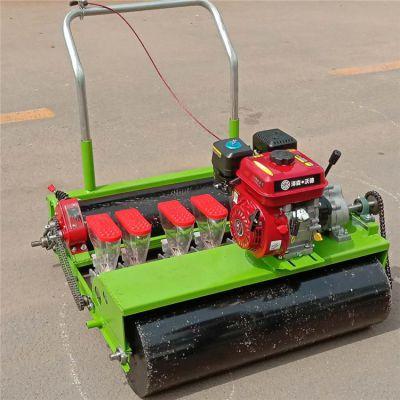 打底小花播种机v打底儿童播种机汽油机自走式人力蔬菜裤蔬菜图片