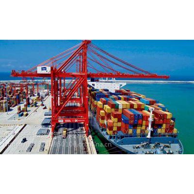 供应日照到白色的集装箱海运公司天天发船